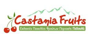 logotypo-castania-fruits-cyprus-sxediasmos-grafistas