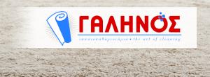 galinos-tapitokatharistiria-sxediasmos-cover-page-grafistas-logo-2